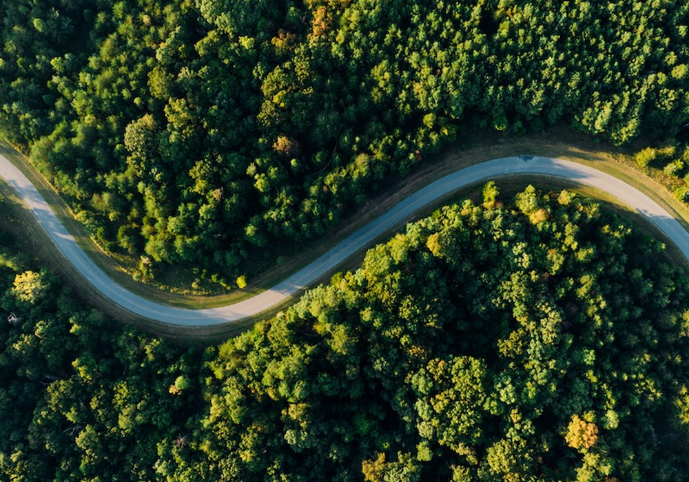 Become a Greener Fleet in 2021 with Pay as you Track